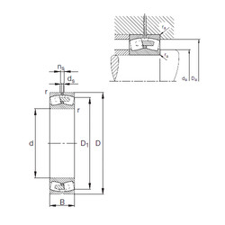 24084-E1A-MB1  Roller Bearings