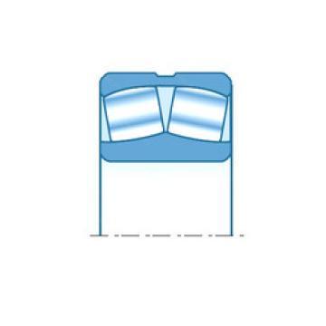 248/1800 NTN Aligning Bearings