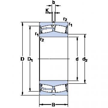 24124-2CS5/VT143 SKF Spherical Roller Bearings