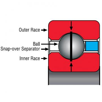 NF180CP0 Thin Section Bearings Kaydon