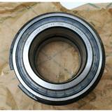 SL045010 PP 2NR INA Cylindrical Roller Bearings